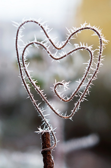Corazón San Valentín con percha metálica
