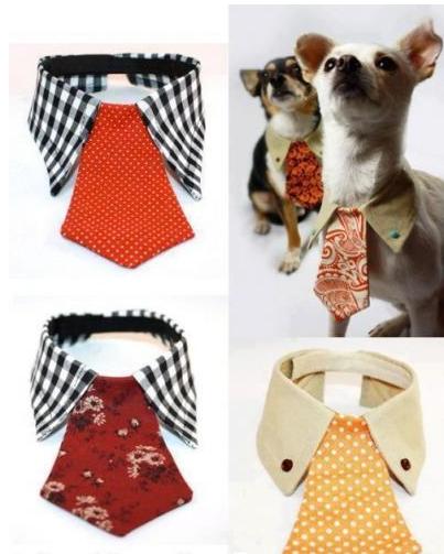 Accesorios mascotas: collar para perros con corbata vieja