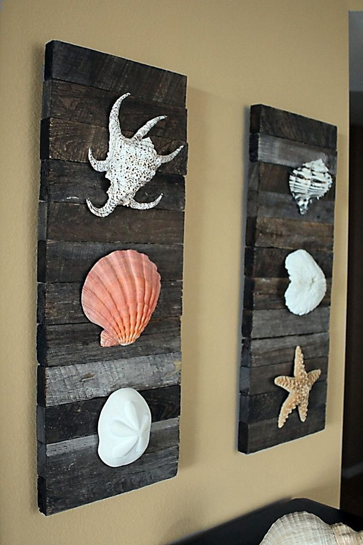 Cuadros con madera y conchas del mar