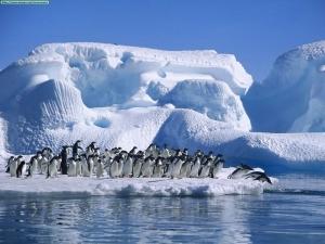 Proyecto Limnopolar: viaje a los ecosistemas acuáticos árticos