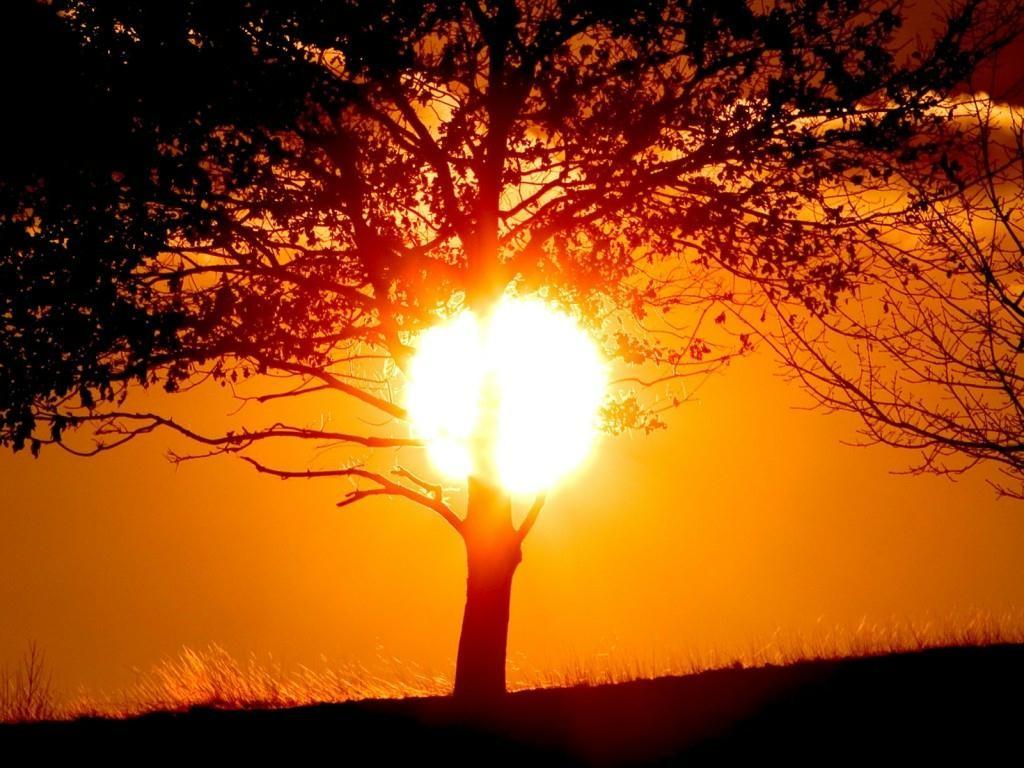 Día del Sol