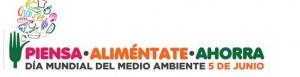 Lema del Día del Medio Ambiente 2013