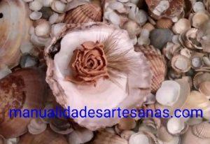 Adorno con rosa de conchas de mar