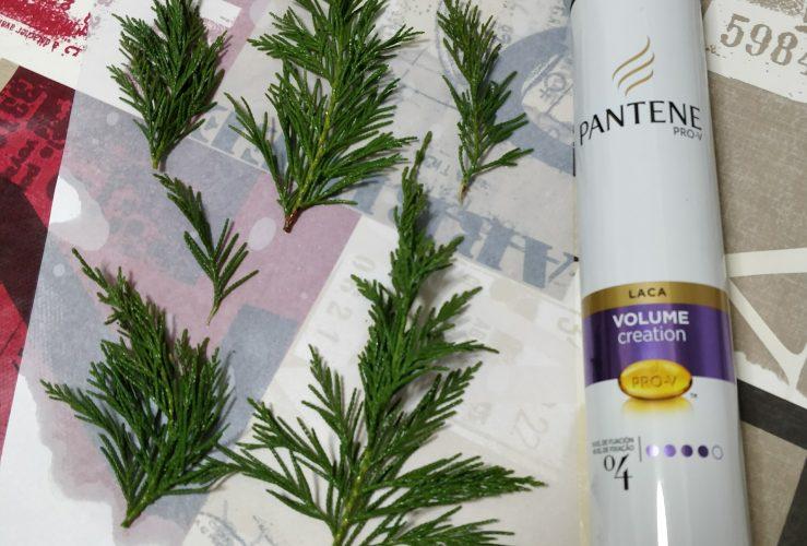 Maceta decorada con ramas de pino liofilizada y conchas pintadas